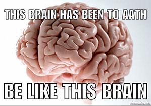 brain meme 210