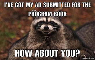raccoon meme 210